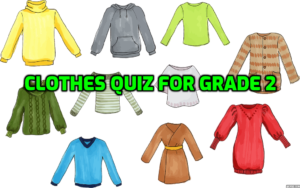 Best Cloth quiz Worksheets for 2nd Grade Free [No#1]