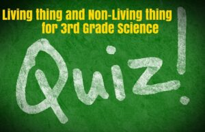 Living thing and Non Living things for fun Quiz [best #1]