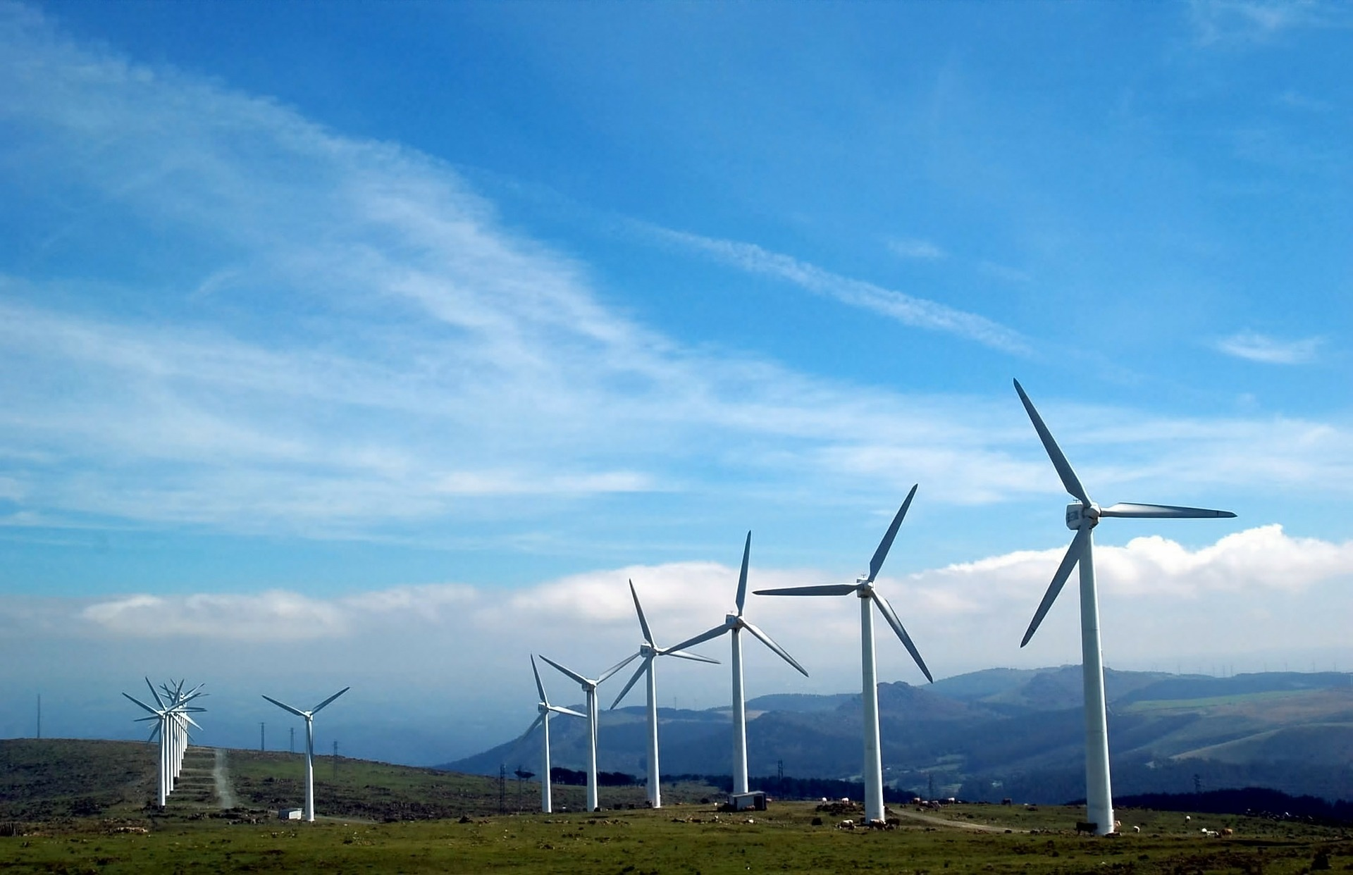 What is a renewable resources with best example [No#1]