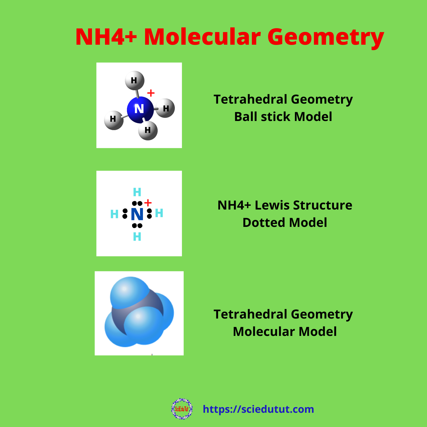 Best Overview: Is NH4+ Polar or Nonpolar?