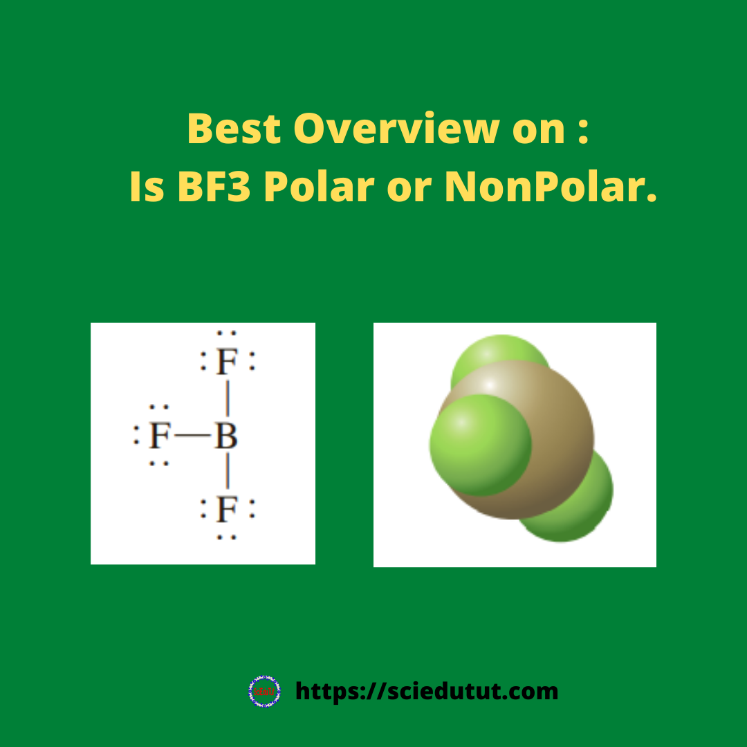 Best overview on: BF3 polar or nonpolar