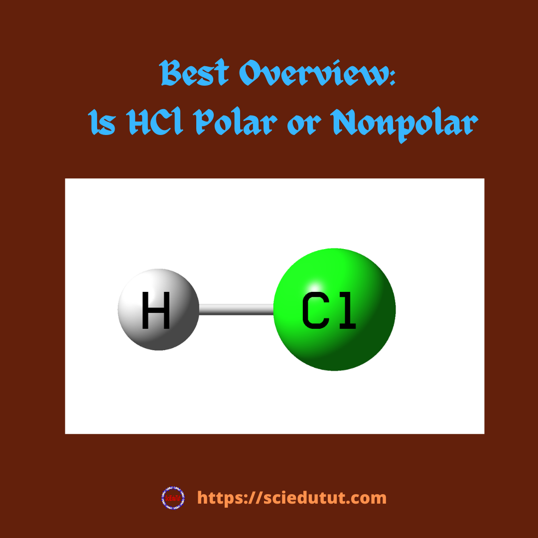 Best Overview: Is HCl polar or nonpolar
