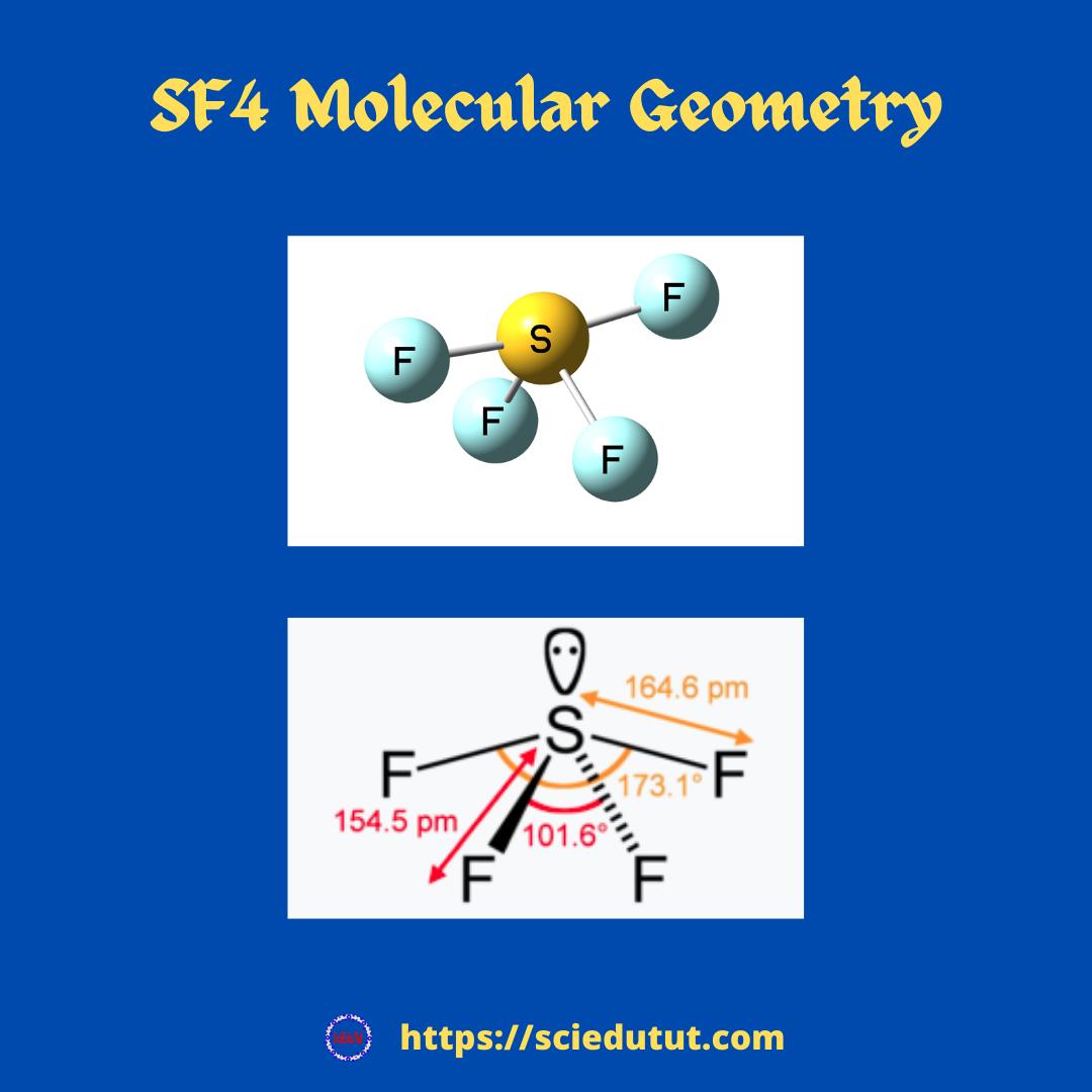 SF4 Molecular Geometry