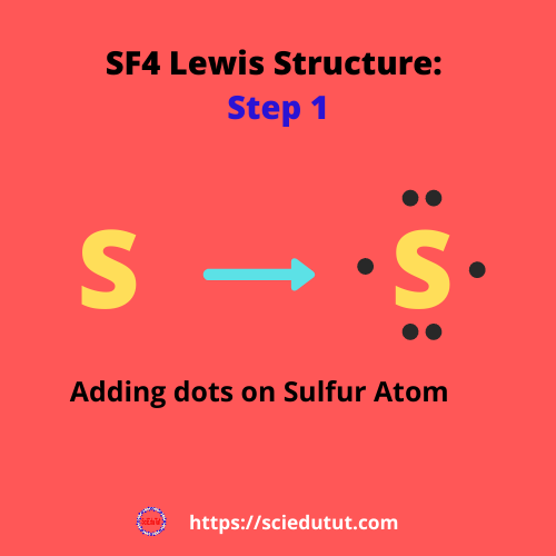 How to draw SF4 Lewis Structure?