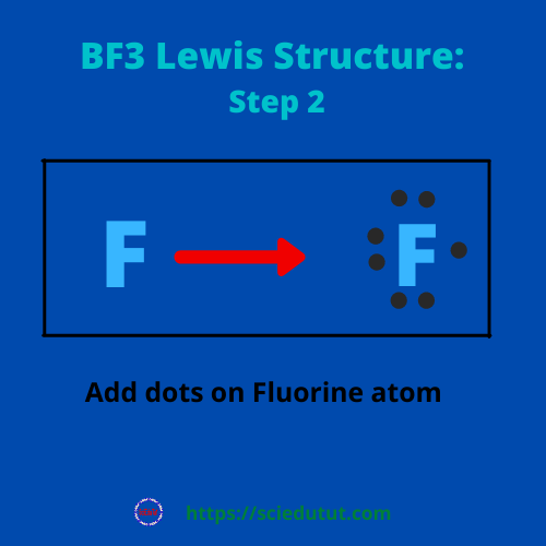How to draw BF3 Lewis Structure?