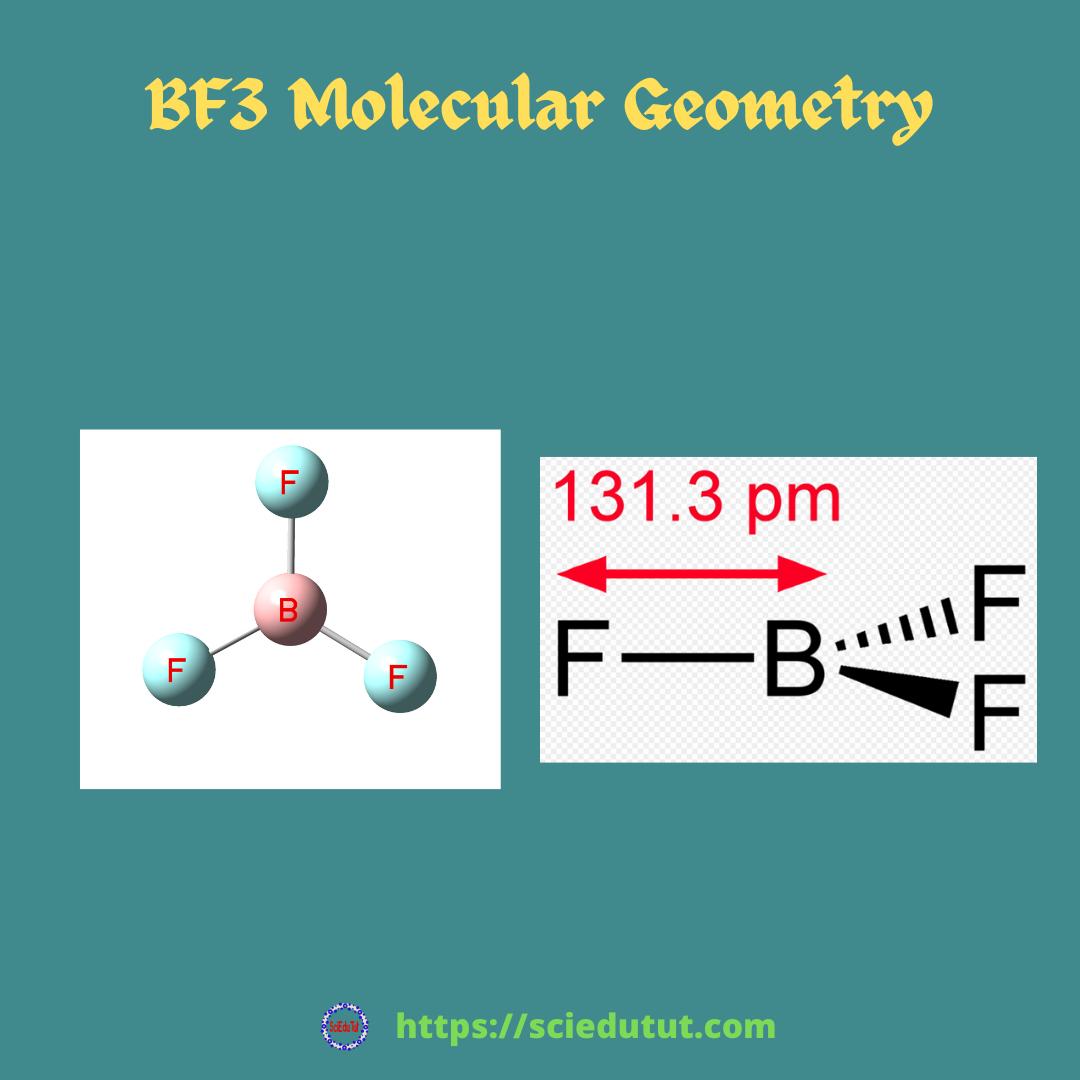BF3 Molecular Geometry