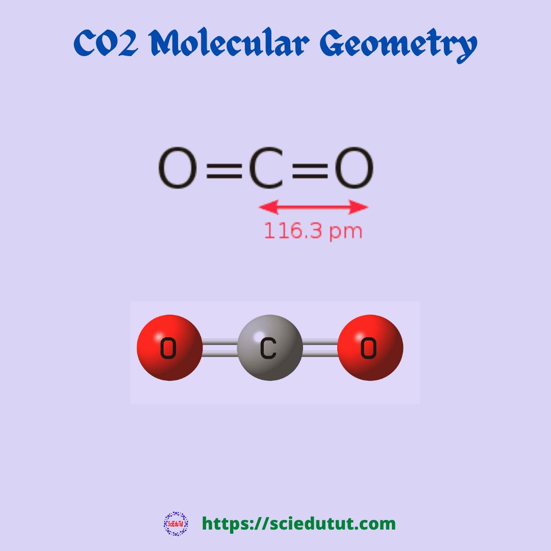 CO2 Molecular Geometry