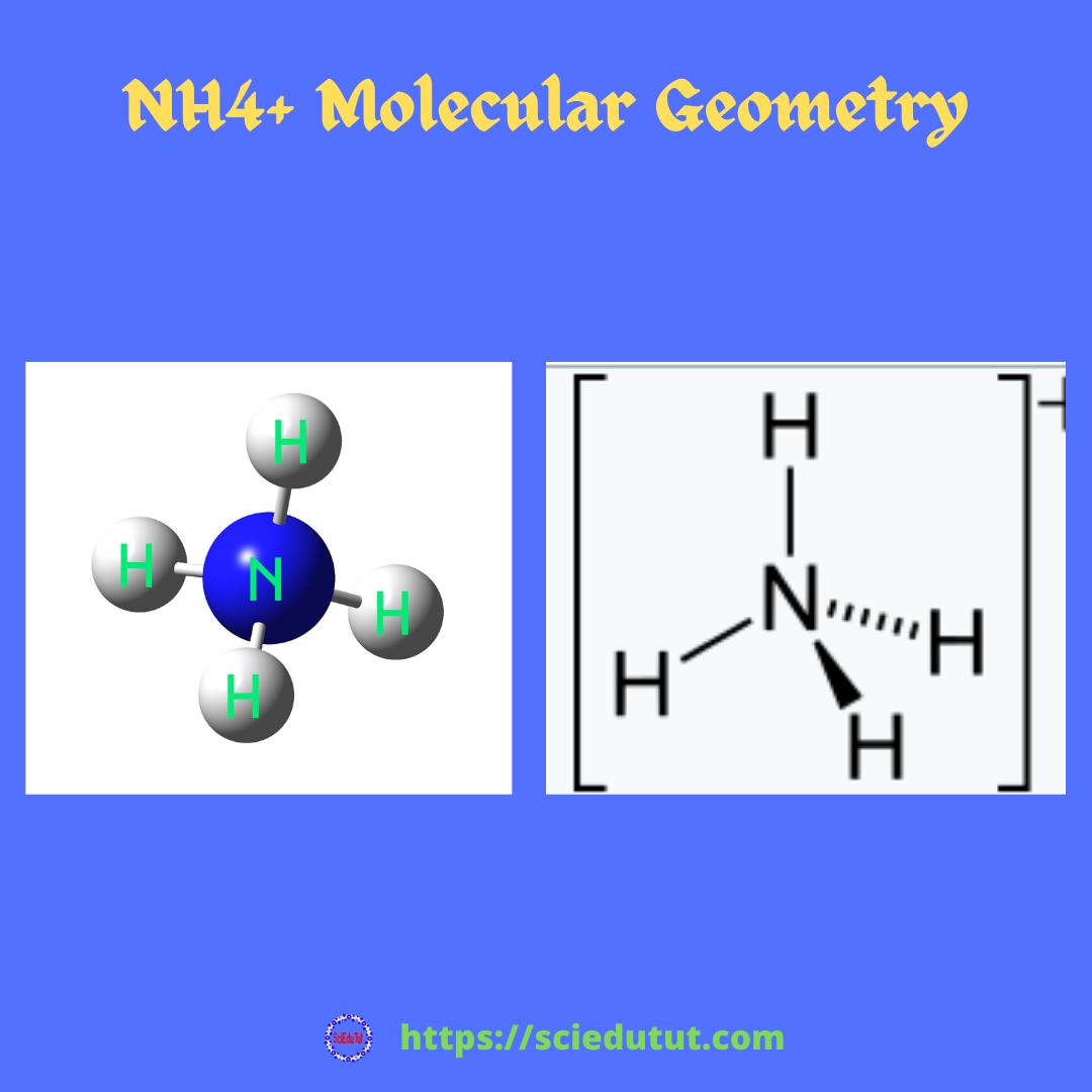 NH4+ Molecular Geometry