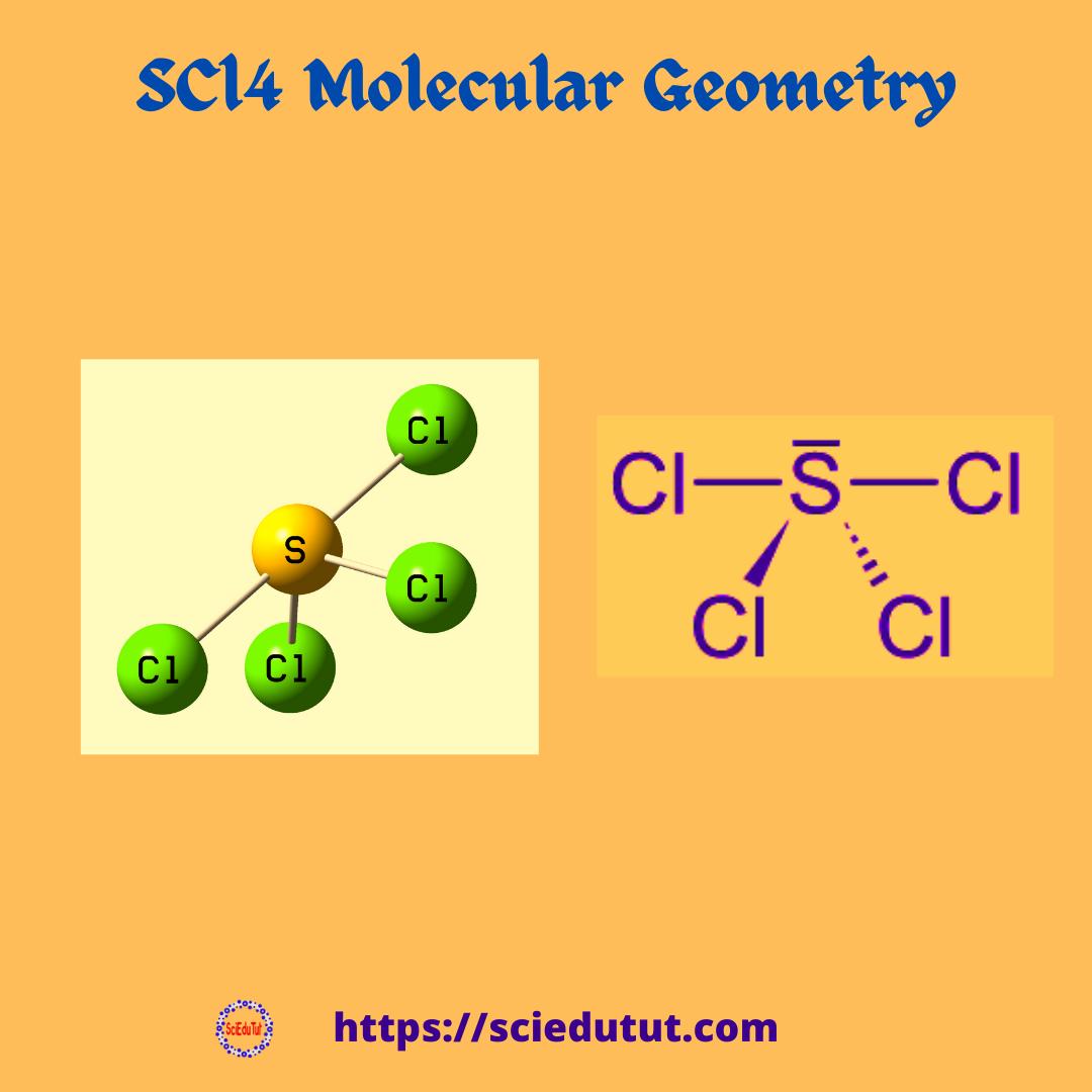 SCl4 Molecular Geometry