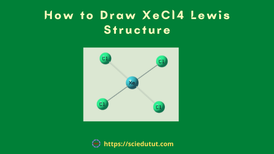 How to draw XeCl4 Lewis Structure?